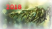 Новогодняя акция 2018!